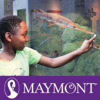 Maymont .jpg